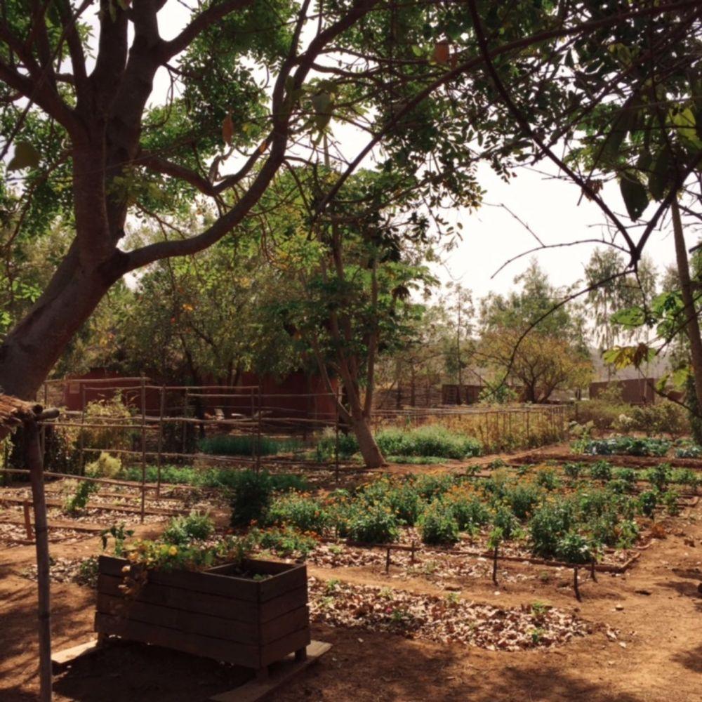 visiterlafrique-com-bamako-mali-campement-kangaba-11