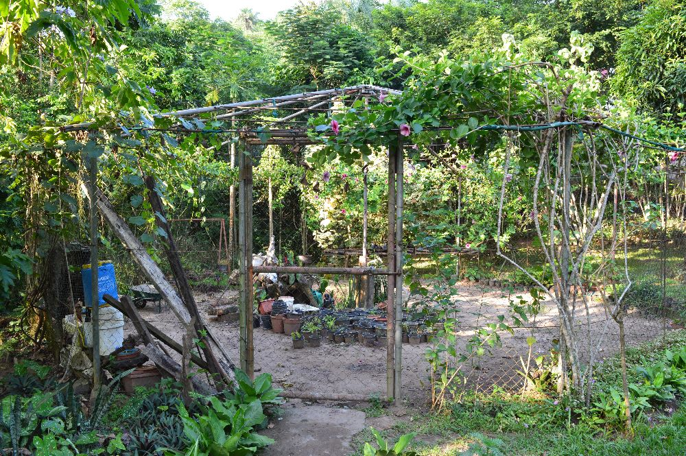 www-visiterlafrique-com-congo-reserve-zongo-fleuve-congo-1