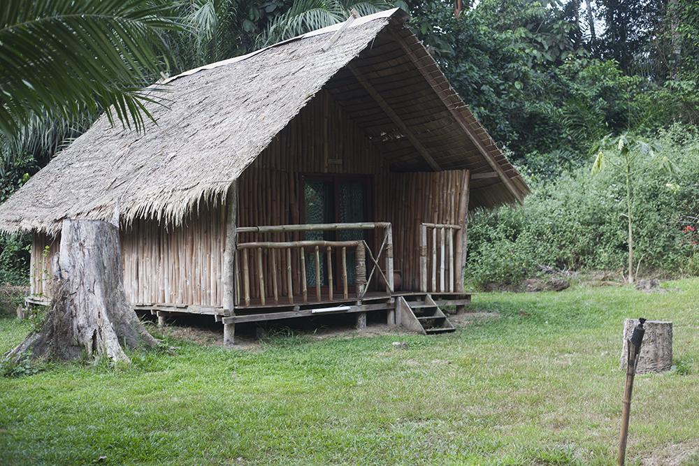 www-visiterlafrique-com-oveng-lodge-9